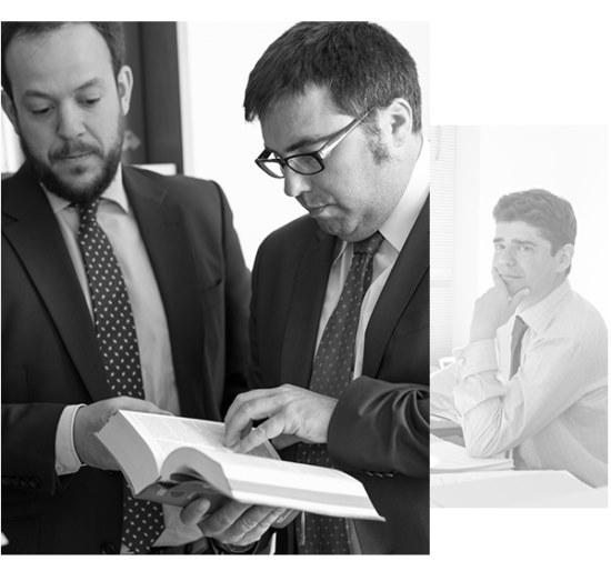 servicios legales sobre bienes inmuebles | Empresa Control de Plagas en Brunete