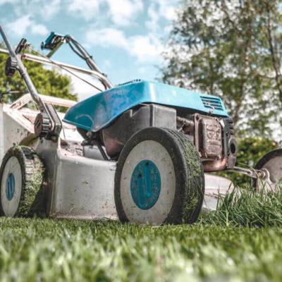 servicios profesionales jardineria comunidades de propietarios vecindia 2 e1539109954133 - Servicios profesionales