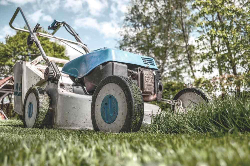 servicios profesionales jardineria comunidades de propietarios vecindia 3 - Jardinería en Las Ventas De Retamosa para Comunidades de Propietarios